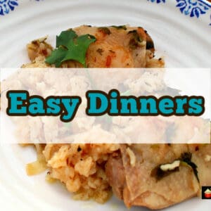 A selection of quick and easy dinners anyone can make