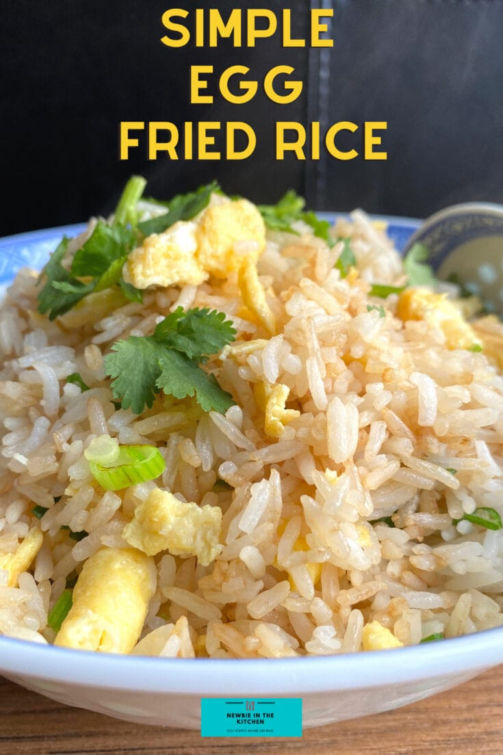 Simple Egg Fried Rice H
